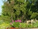 Children's Garden 1.jpg