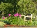 Children's Garden 5.jpg